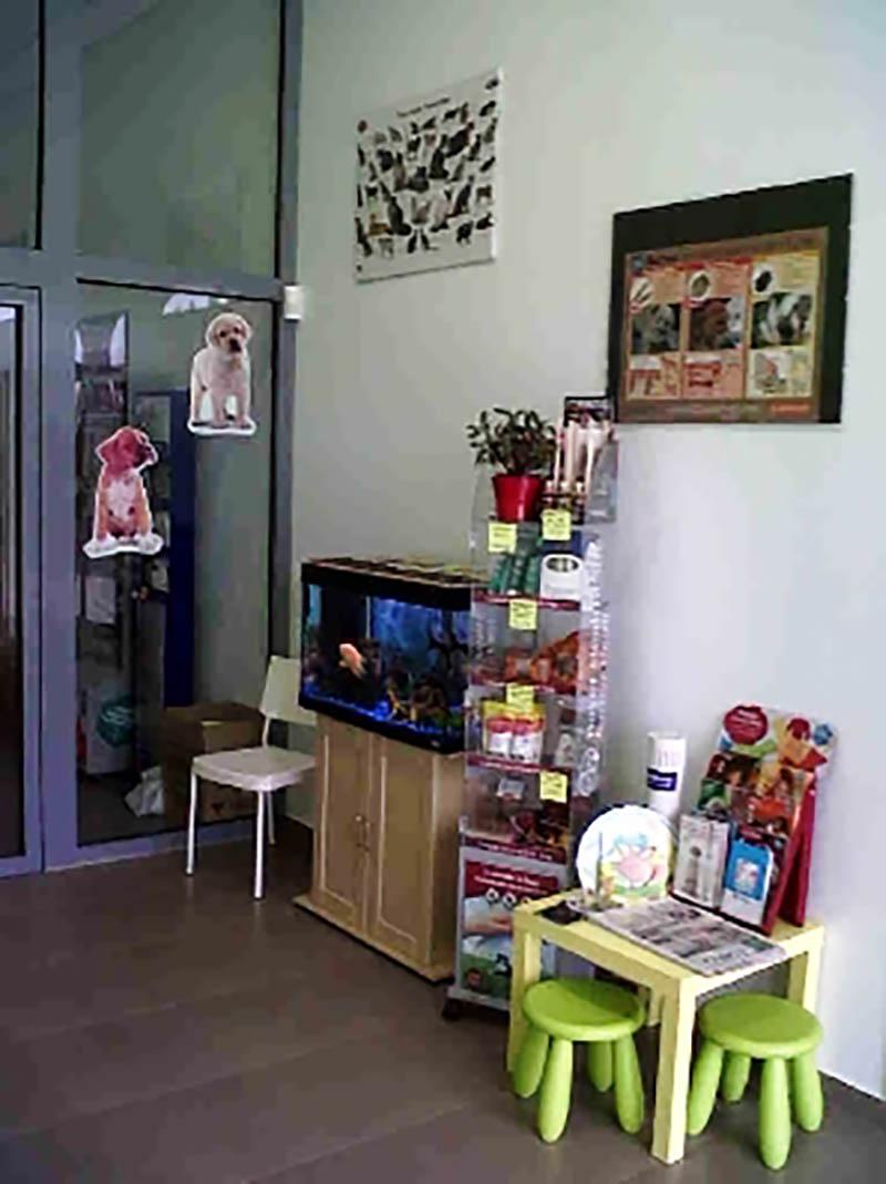 Centro veterinario novo milladoiro milladoiro virtual for Muebles compostela milladoiro